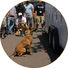 K-9 BSD Training Events